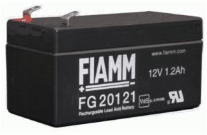 FIAMM FG